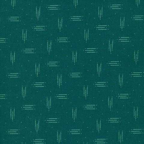 Avorio vert foret -bords noirs